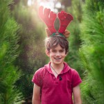 Boy with glitter amongst christmas trees