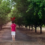 Boy walking along tree lined road