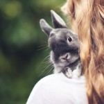 Teenage girl with a small grey rabbit